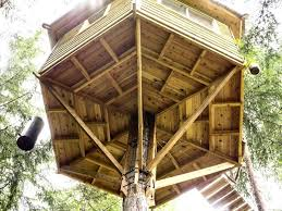 Free Treehouse Plans Free Tree House Plans Freestanding Treehouse