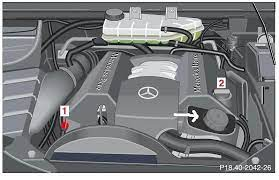 001 989 24 03 12 & q 1 32 0001. Where Do I Add The Power Steering Fluid Mercedes Benz Forum