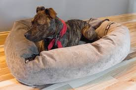 majestic pet beds. A Dog Laying On Our Pick For Best Bed, The Majestic Pet Product Suede Beds