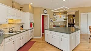kitchen cabinet paintShould I Paint or Refinish my Kitchen Cabinets  Angies List