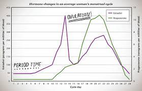 Estrogen Levels Chart 73 Methodical Estradiol Levels In Women Chart