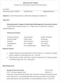 Resume Format To Simple Job Resume Template Simple Resume Format ...