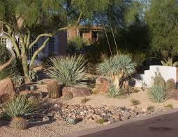 Small Picture 54 best Desert Landscaping images on Pinterest Desert landscape