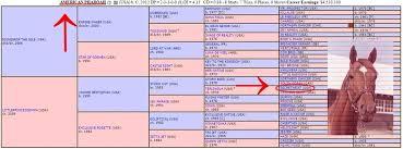 Pharoahs Genealogical Chart Leads Back To Secretariat