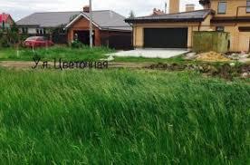 Купить земельный участок в районе Ставропольский в регионе  Купить земельный участок 10 соток Ягодное с