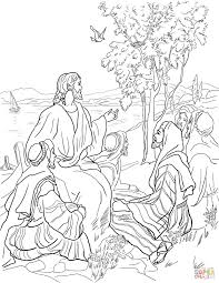 Parable Of Mustard Seed Coloring Page