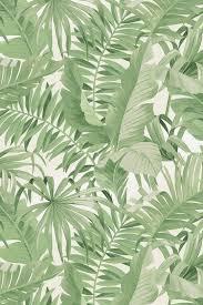 Palma Tropical Wallpaper Green ...