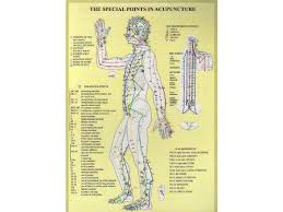 20 Described Acupuncture Alarm Points Chart