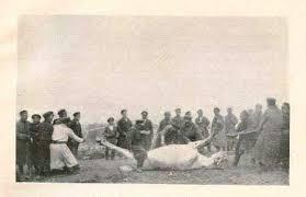 Türklerde At Kurbanı ve Dede K rde At Kurbanı ve Dede Korkut'taki İzleri*