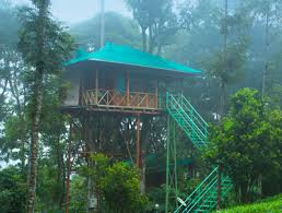 Dream Catcher Kerala Gorgeous Dream Catcher Plantation Resort Munnar 3232 32