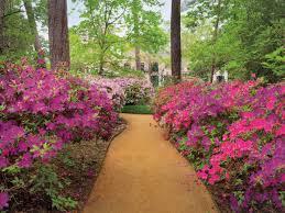 lynn herbert river oaks garden club a garden book for houston and the texas
