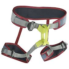 Edelrid Harness Size Chart Buy Edelrid Zack Gym Vinered Online Now Www Exxpozed Com