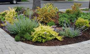 Small Picture Front Garden Design Ideas Without Grass Ideasidea