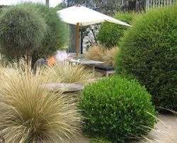 Small Picture 50 best Low Impact Development images on Pinterest Rain garden