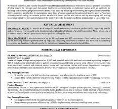 Famous Curriculum Vitae Writing Service Ideas Entry Level Resume