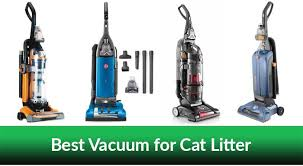 Best Vacuum for Cat Litter On the Market in 2018 - List of The Top Selling  Models!