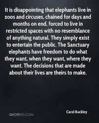 zoos quotes