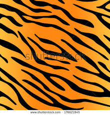 Tiger Pattern Amazing Tiger Skin Pattern Stock Vector Royalty Free 48 Shutterstock