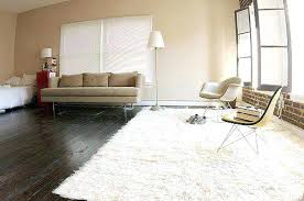 White shag rug living room White White Fuzzy Area Rug White Area Rug For Bedroom Awesome Best White