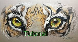 realistic drawings of animals in color. Drawing Realistic TIGER Eye For Beginners Color Pencil On Colored Paper YouTube Throughout Drawings Of Animals In