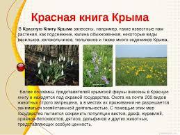 Презентация к уроку окружающий мир в классе на тему quot Мой  Красная книга Крыма В Красную Книгу Крыма занесены например такие известные