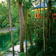 Wooloweyah Accommodation From Australiau0027s 1  StayzTreehouse Accommodation Nsw