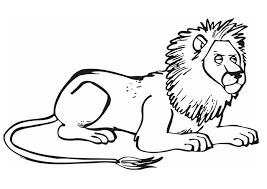 Disegno Da Colorare Leone Cat 12841 Images