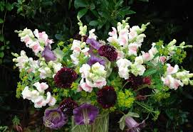 country garden florist. flowy cottage garden florist 78 in stunning home designing ideas with country