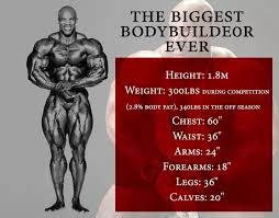 Bodybuilding Body Measurement Chart Who Is Or Was The Biggest Bodybuilder Ever Quora