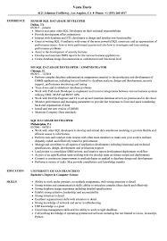 Sql Server Developer Resumes Sql Server Developer Resume Examples
