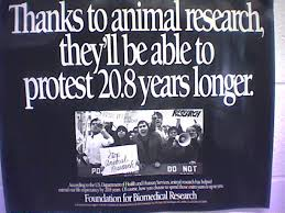 how to write a personal pro animal research articles frequently asked questions about animal experimentation