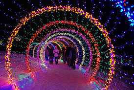 while the flowers are tucked in for the winter the green bay botanical garden is transformed into a spectacular array of botanical light displays inspired