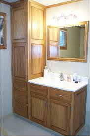Floor Storage Cabinets Bathroom Magnificent Storage Cabinets In Designing A Delectable