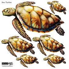 sea turtle wall stickers bold wall art