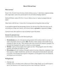 Essay Topics For High School English Argumentative Essay