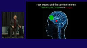 Ben Sessa Mdma Therapy A Child Psychiatrists Perspective Youtube