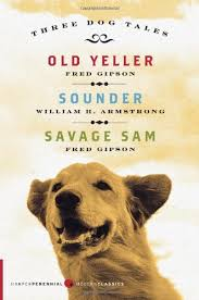 sample college admission old yeller essay once more mama shows her loving care when old yeller becomes ill and must be shot died out of his misery