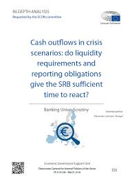 What Is Cash Outflows Cash Outflows In Crisis Scenarios Do Liquidity Requirements And
