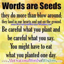 Image result for wisdom words quotes