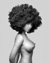 57 best images about Afro nude on Pinterest Vintage Black women.
