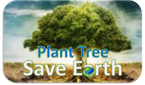 plant a trees and save the earth es plant a trees and save the earth essay