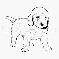 Printable Puppy Pictures Dachshund Puppies Coloring Pages With