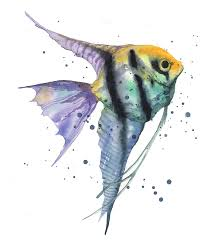 angelfish painting alluring angelfish by alison fennell