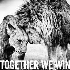 Power Couple Quotes Together we win love quotes couple relationship lion My Love My 23