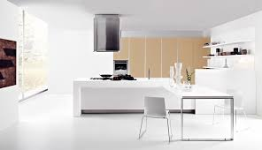 Kitchen Interior Black And White Kitchen Interior Design Deploying Smart Plan