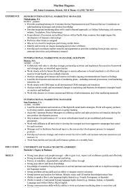 marketing manager resume international marketing manager resume samples velvet jobs