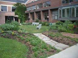 Small Picture School Gardens
