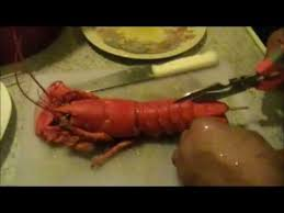 frozen lobsters how to cook and cut