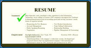 Sample Summary In Resume Resume Skills Summary Resume Samples Summary Sample Emberskyme 18