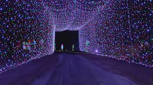 Cave Christmas Lights Louisville Lights Under Louisville Expecting Another Record Season With